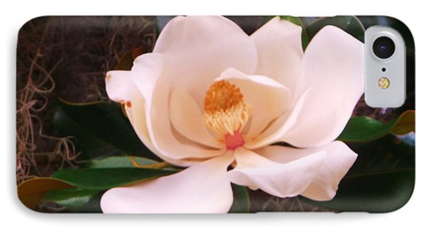 IPhone Case featuring the photograph White Magnolia by Yolanda Rodriguez