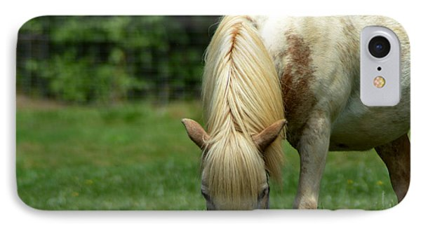 White Miniature Horse IPhone Case