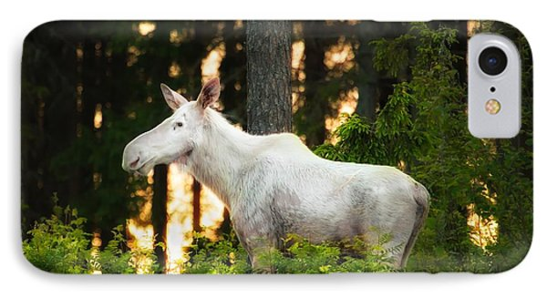 IPhone Case featuring the photograph White Moose In Sunset by Rose-Maries Pictures