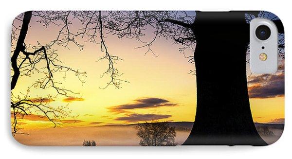 White Oak At Sunrise Phone Case by Thomas R Fletcher