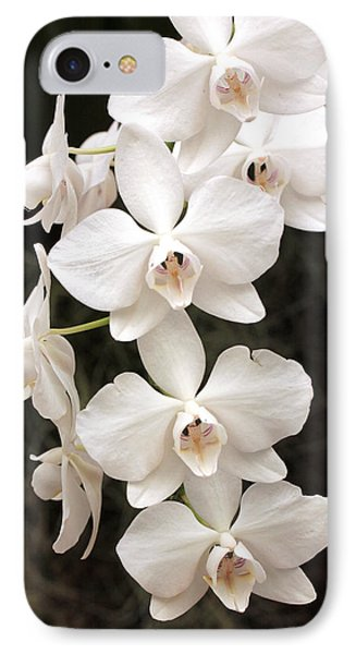 White Orchid Cascade IPhone Case by Harold Rau