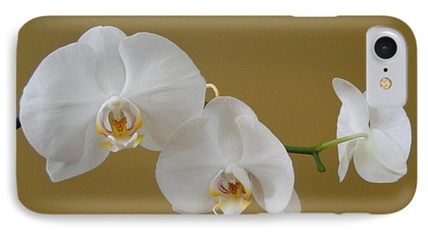White Orchid's IPhone Case by Cindy Croal