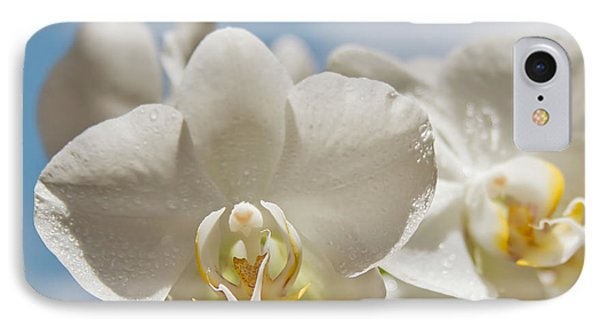 White Orchids - Messengers Of Light IPhone Case by Sharon Mau