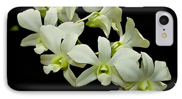 White Orchids IPhone Case by Swank Photography