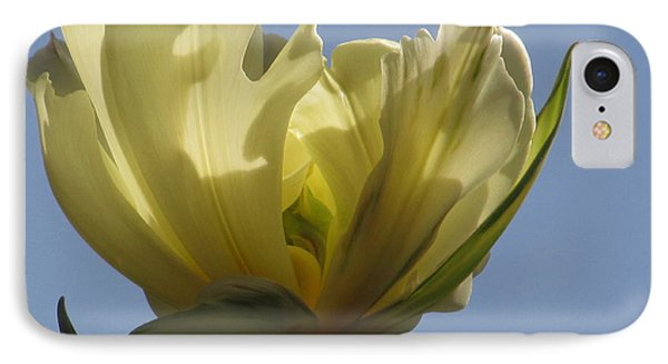 White Parrot Tulip IPhone Case by Alfred Ng