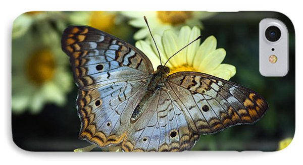 White Peacock Butterfly On A Daisy Phone Case by Saija  Lehtonen