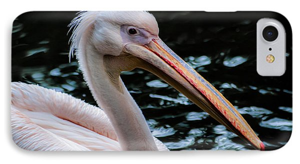 White Pelican Phone Case by Hannes Cmarits