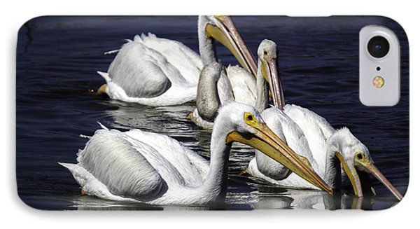 White Pelicans Fishing IPhone Case