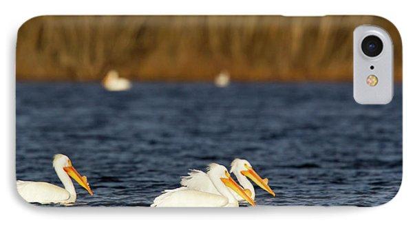 White Pelicans On Calamus Reservoir IPhone Case
