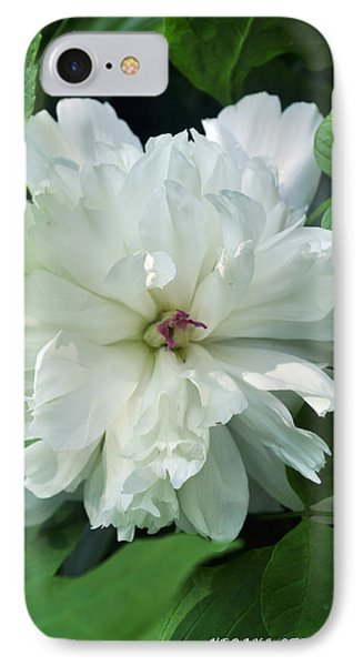 IPhone Case featuring the photograph White Peonese by Verana Stark