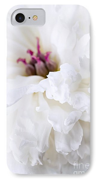 White Peony Flower Close Up IPhone Case