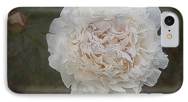 White Peony IPhone Case by Susan Candelario