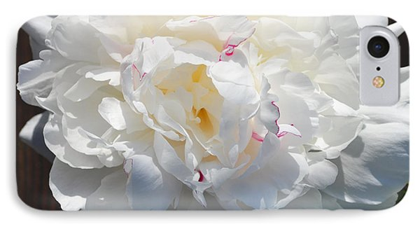 White Peony IPhone Case by Tine Nordbred