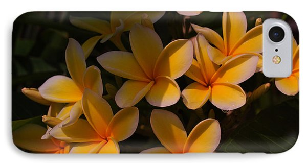 IPhone Case featuring the photograph White Plumeria by Miguel Winterpacht