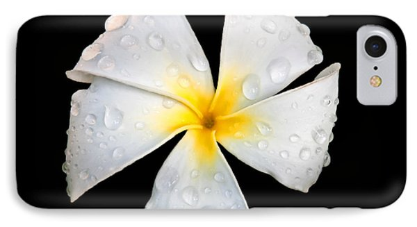 White Plumeria Or Frangipani Flower With Raindrops On Black Phone Case by Valerie Garner