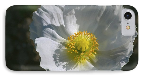 IPhone Case featuring the photograph White Poppy by Rima Biswas