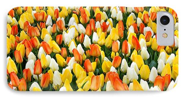 White Orange And Yellow Tulips IPhone Case by Menachem Ganon