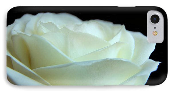 White Avalanche Rose IPhone Case by Eden Baed
