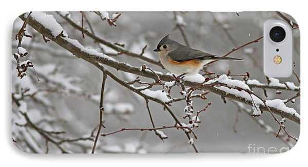 White Snow Titmouse IPhone Case