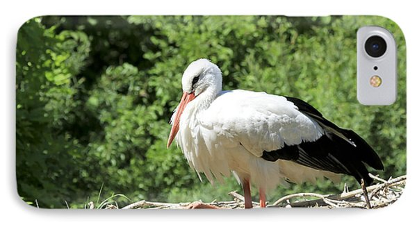 IPhone Case featuring the photograph White Stork  by Teresa Zieba