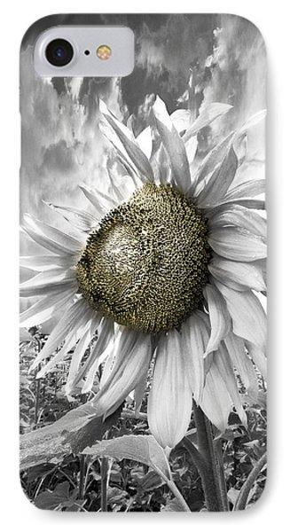 White Sunflower Phone Case by Debra and Dave Vanderlaan