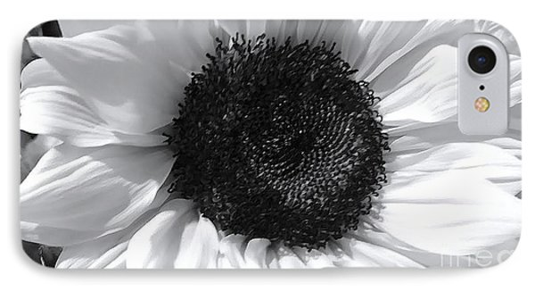 IPhone Case featuring the photograph White Sunflower by Jeannie Rhode