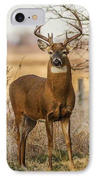 IPhone Case featuring the photograph White-tail Buck by Rob Graham