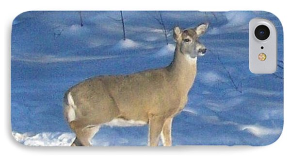 IPhone Case featuring the photograph White Tail Deer by Brenda Brown