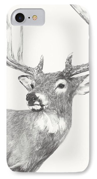 White Tailed Buck Study IPhone Case