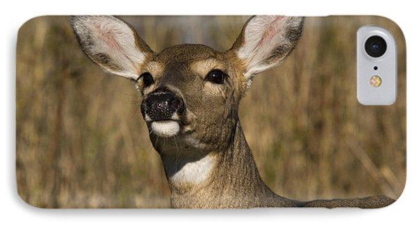 White-tailed Deer Phone Case by Linda Freshwaters Arndt