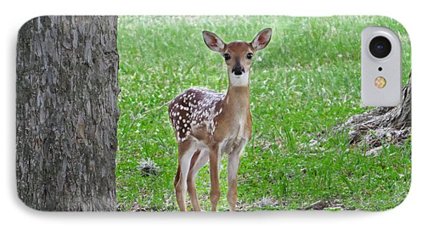 White-tailed Fawn - Face Of Innocence IPhone Case by Ella Kaye Dickey