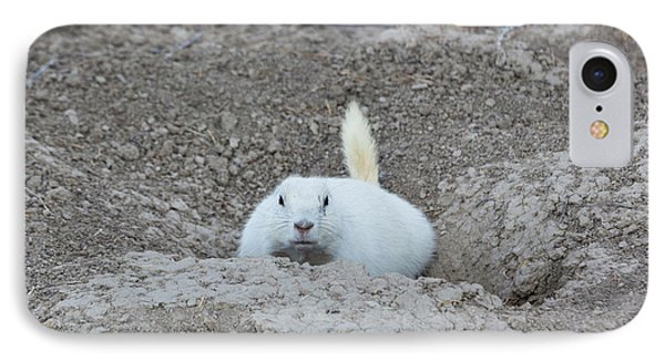 White-tailed Prairie Dog Cynomys IPhone Case