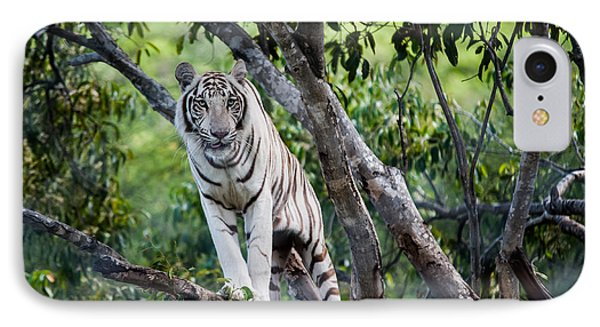 White Tiger On The Tree Phone Case by Jenny Rainbow