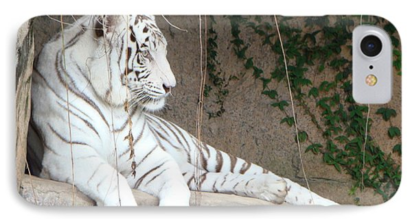 White Tiger Resting IPhone Case