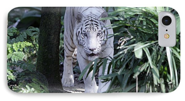 IPhone Case featuring the photograph White Tiger  by Shoal Hollingsworth
