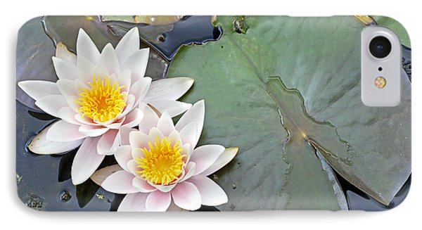 White Water Lilies Netherlands IPhone Case by Jelger Herder