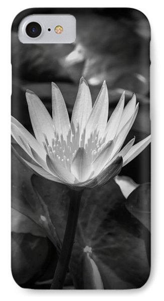 IPhone Case featuring the photograph White Water Lily 001 Bw by Lance Vaughn