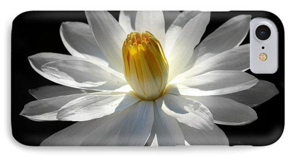 White Water Lily #2 IPhone Case