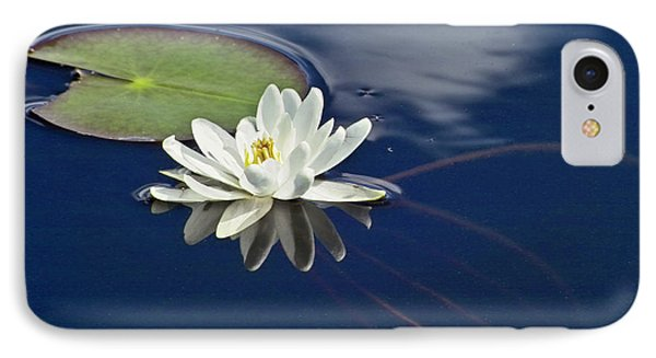 White Water Lily Phone Case by Heiko Koehrer-Wagner
