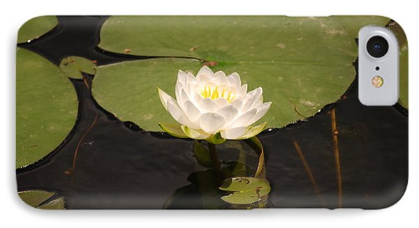 IPhone Case featuring the photograph White Water Lily by Mark McReynolds