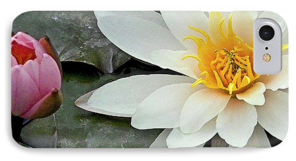 White Water Lily Nymphaea Phone Case by Heiko Koehrer-Wagner