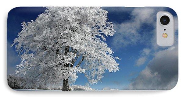 White Windbuche In Black Forest IPhone Case
