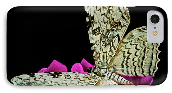 White Witch Moth Resting At Midnight  Phone Case by Leslie Crotty