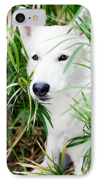 IPhone Case featuring the photograph White Wolf by Erika Weber