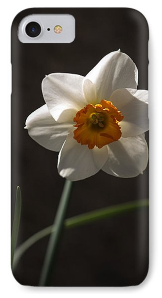 White Yellow Daffodil IPhone Case