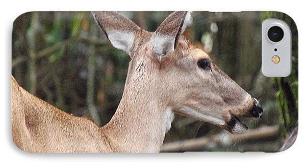 Whitetail Deer 038 IPhone Case by Chris Mercer