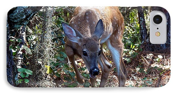 IPhone Case featuring the photograph Whitetail Fawn 008 by Chris Mercer
