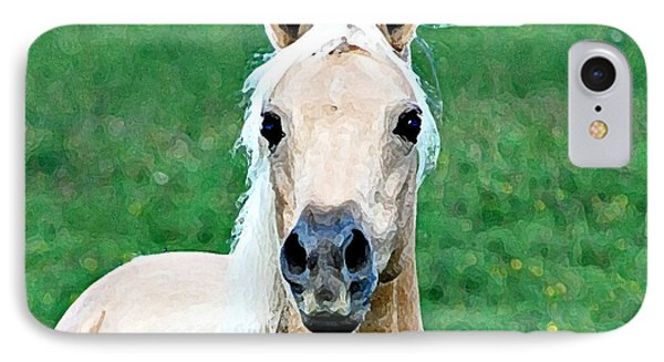 IPhone Case featuring the photograph Who Comes To My Pasture  by Lila Fisher-Wenzel