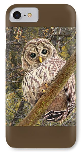Who Who Are You Barred Owlet Phone Case by Jennie Marie Schell