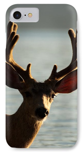 Who Ya Looking At IPhone Case